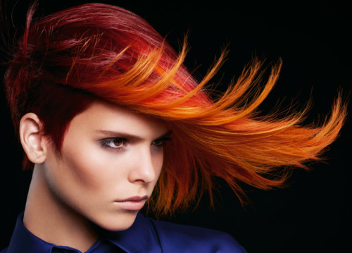 Colorworx | Igora Color Worx